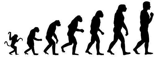 Evolution-005